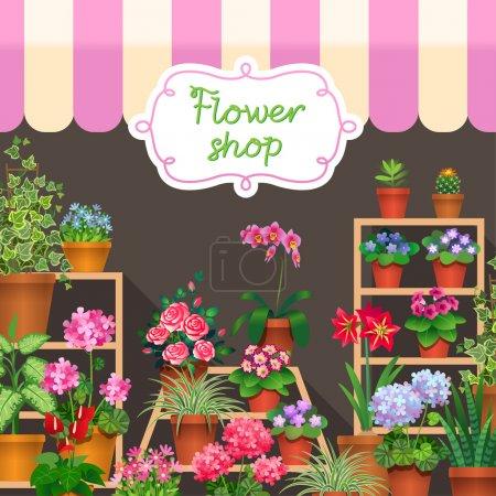 Houseplants in show-window of flower shop